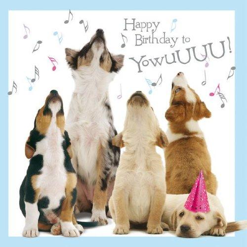 Hunde Karte - Howling Pups - Grußkarte (Geburtstagskarte Mit Hund)