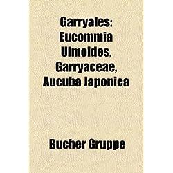 Garryales: Eucommia Ulmoides, Garryaceae, Aucuba Japonica
