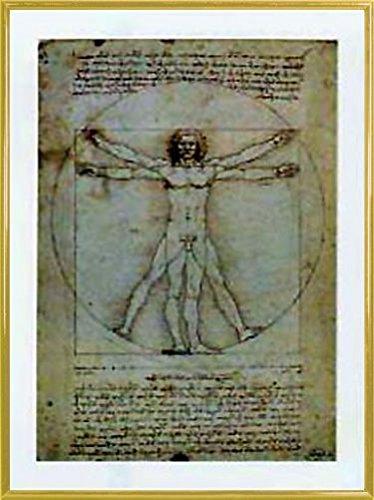 Leonardo Da Vinci Poster Kunstdruck und Kunststoff-Rahmen - Vitruvianischer Mensch IV (80 x 60cm)