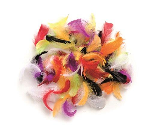 GLOREX 6 3821 029 - Plumas Decorativas