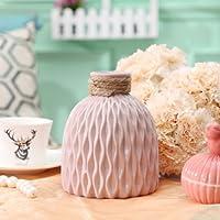 Ablerhome Decor Bottle Shaped Vase Ceramic Decorative Vases Embossed Flower Arrange Display Pink Blue White GIFT (Dusky Pink)