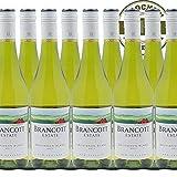 Weißwein New Zealand Sauvignon Blanc Brancott Estate trocken (9x0,75l)
