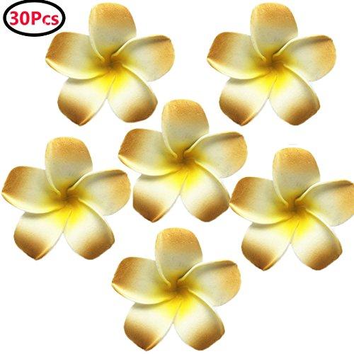 Calcifer-30pcs-236-Hawaii-Hawaiian-Plumeria-Flores-Clips-Clips-de-pelo-de-novia-boda-fiesta-playa