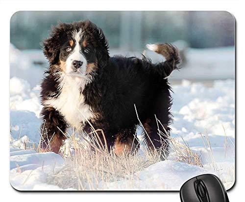 Gaming-Mauspads, Mauspad, Hund Bernese SlaSnick Puppy Cute She Animal
