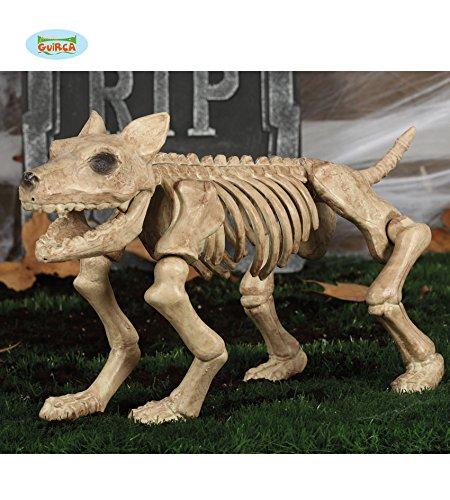 Skelett Hund Kunststoff, Dekoration Halloween, 46cm