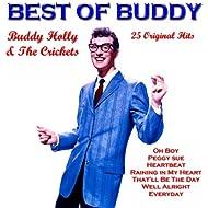 Best of Buddy