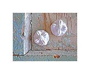 Shabby Chic Carved Rosettes (set of 2) Furniture Appliques - Wood & Resin - Paintable - Stainable