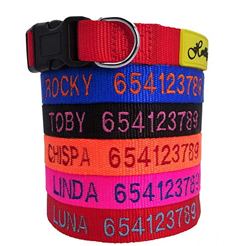 Holly mascotas Collar de Perro Personalizado, de 24 a 72h lo tendrás en casa, Bordados Nombre y...