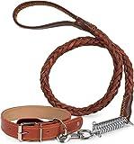 Puccybell Leder Hundehalsband mit Nieten und Hundeleine (1,2m) im Set, Halsband für Hunde und geflochtene Leine mit Ruckdämpfer HLS003 (M, Braun)