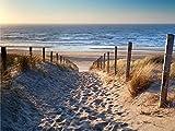 Leinwandbild, Trip Meer, Strand, Dünen, Horizont, Bild, Wandbild, Wanddeko, Leinwand, Wanddekoration, blau, beige, braun