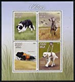 Best GENERIC Blinds - Madagascar 2015 Dogs perf sheetlet 4 Values u/m Review