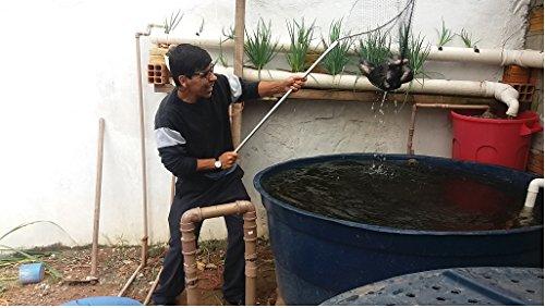 criacao-de-peixes-em-caixa-dagua-passo-a-passo-sistema-de-montagem-caixa-dagua-para-criacao-de-peixe