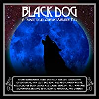 Black Dog: A Tribute To Led Zeppelin's Greatest Hits