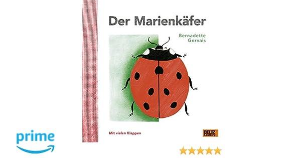 Ziemlich Marienkäfer Farbseiten Ideen - Framing Malvorlagen ...