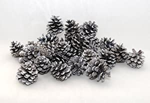 White Frosted Natural Pine Cones 500 g