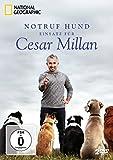 National Geographic: Notruf Hund - Einsatz für Cesar Millan [2 DVDs]