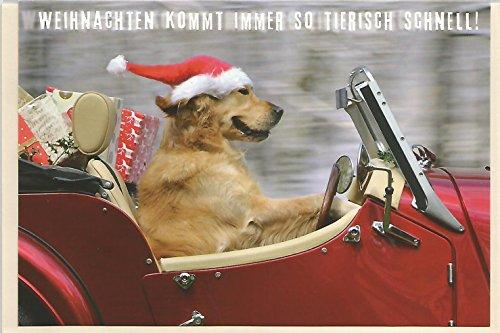 Weihnachtskarte * Weihnachten kommt immer so tierisch schnell