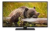 JVC LT-40V45LFC 102 cm (40 Zoll) Fernseher (Full HD, Triple-Tuner)