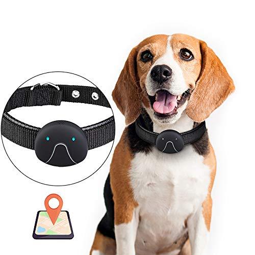 QNMM Localizador de Perros GPS Anti-Lost Tracer con Collar de Perro Seguimiento de GPRS, Seguimiento en Tiempo Real, Impermeable, Aplicación Gratuita, Sin Cargo por Servicio,Black