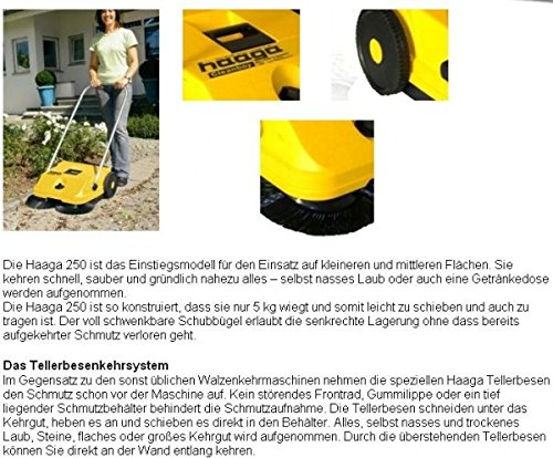 Haaga Kehrmaschine Mod. 250 mit Tellerbesenkehrsystem