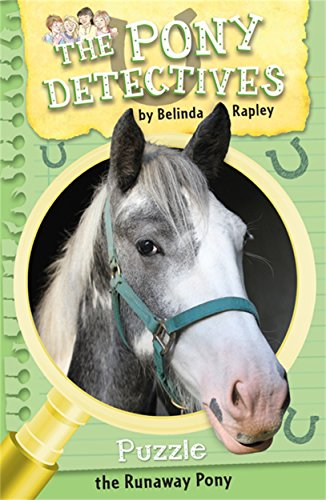 Puzzle: The Runaway Pony (The Pony Detectives)