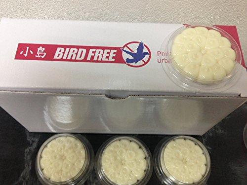 bird-free-dissuasore-per-piccioni-e-colombe