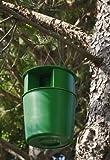 PROCEREX® Cubo trampa procesionaria del pino