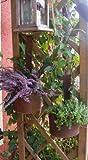 Rostige Garten Pflanztöpfe im Set, Gartendeko Rost, Zaundeko
