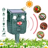 HEYSTOP Katzenschreck Solar, Tiervertreiber wasserdichte Utraschall Bewegungssensor Abwehr mit Batteriebetrieben und Blitz 4 Modus Einstellbar für Katzen, Hunde, Schädlinge, Rotwild