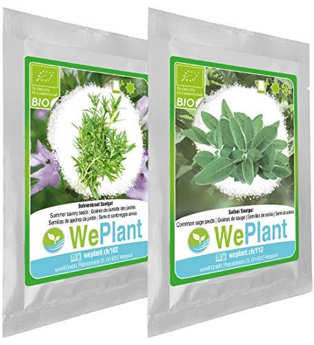 BIO Bohnenkraut & Salbei Pflanzen-Samen Set - indoor/outdoor