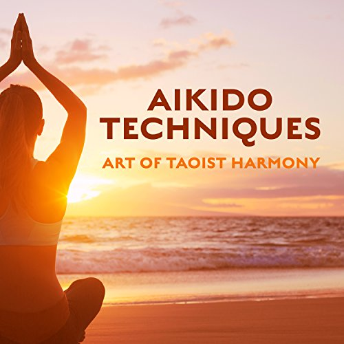Amazing Aikido Chill
