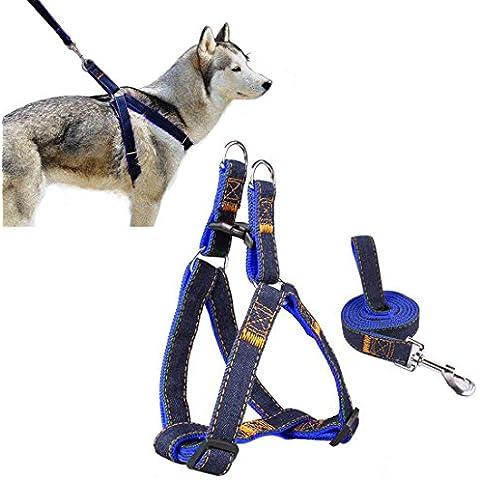 Arnés del animal doméstico, perro lleva Ambielly Jean Correa No-Pull perro / gato con la seguridad del perro hebillas de liberación rápida del arnés de la correa de cadena de la cuerda del vaquero (Azul oscuro,