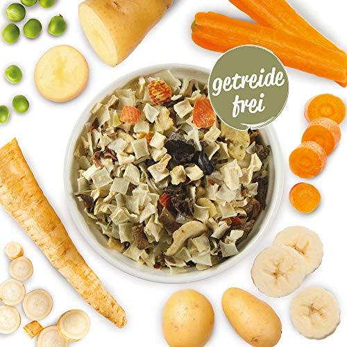 Schecker Veggi Kartoffel Gemüse Mix 1 kg mit Bananen und Petersilie Getreidefreies, - Gemüseflocken Hundefutter