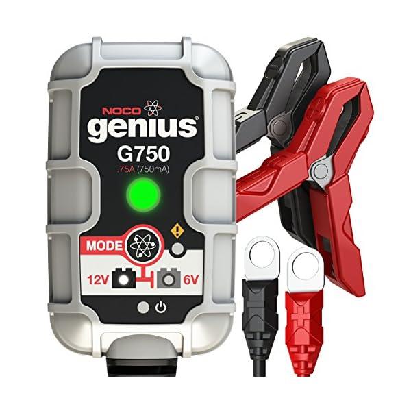 NOCO Genius Cargador Inteligente de Batería