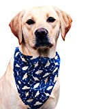 #4: That Dog In Tuxedo Space Cadets Dog Bandana Dog Scarf with Adjustable Dog Collar (S)