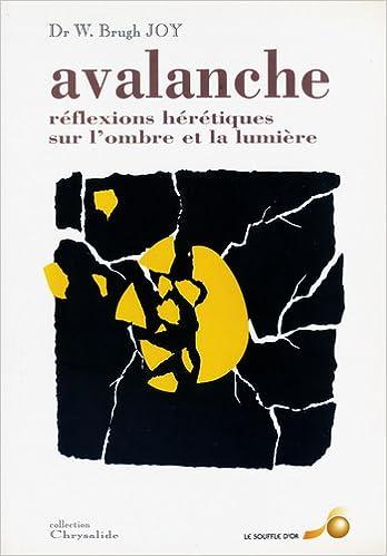 Télécharger en ligne Avalanche : Réflexions hérétiques sur l'ombre et la lumière pdf, epub