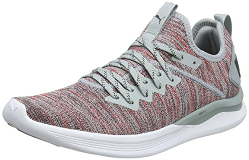 Puma Herren Ignite Flash Evoknit Cross-Trainer, Grau (Quarry-High Risk Red-Asphalt), 42 EU