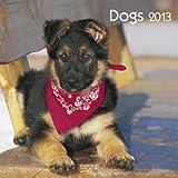 Dogs 2013: Broschürenkalender mit Ferienterminen