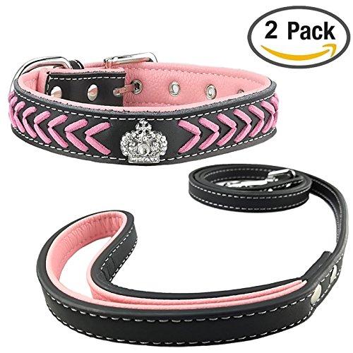Newtensina Hundehalsband und Leine Set Nylonb?nder gewebter Bling Kragen Leder Diamante Welpen Halsband mit Leinen f¨¹r Hunde
