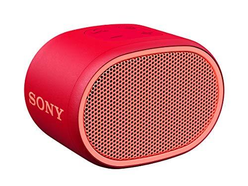 Sony SRSXB01R - Altavoz inalámbrico portátil (Compacto, Bluetooth, Extra Bass, 6h de...