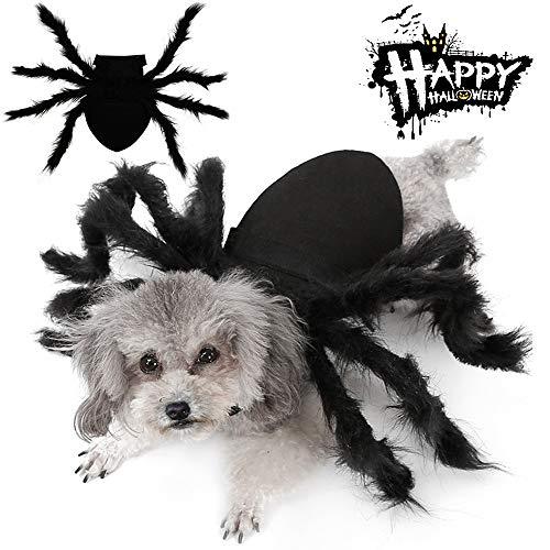 Easyme Disfraces de Halloween de araña, para Mascotas, Gato, Perro, simulación de araña, Disfraces de Cosplay con Hebilla Ajustable para el Cuello