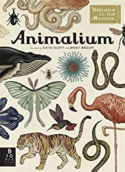 Animalium (Welcome to the Museum) by Jenny Broom (2014-09-01)
