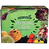 A to Z 82001 Plant Your Own Peculiar Salad, Multi-Colour, 8x20x15 cm