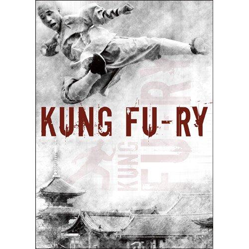 Bild von Kung Fu-ry