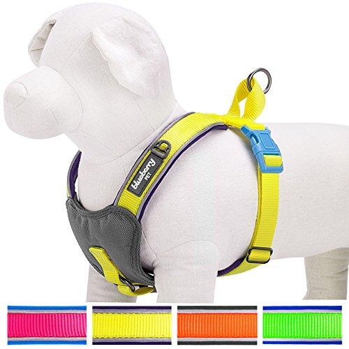 Blueberry Pet Neue Sommerhoffnung 3M Reflektierendes 52-65cm Brust Neon Gelb Gepolstertes Hundegeschirr Weste, Ultra-weich Zugentlastend, Passender Hundehalsband erhältlich separate