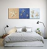LB Spiaggia,Stella di mare,Sabbia/Stampa di immagini su tela,Dipinti ad olio Quadro su tela Decorazioni per la casa,3 pannelli Decorazioni per pareti,40 x 40 cm pronti per essere appesi