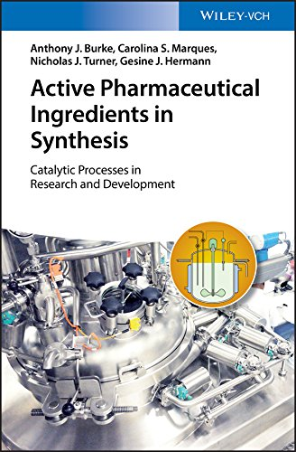 Active Pharmaceutical Ingredients in Synthesis: Catalytic Processes in Research and Development (English Edition)