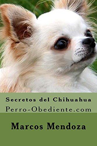 Secretos del Chihuahua: Perro-Obediente.com
