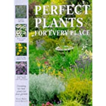 Perfect Plants for Every Place: Choosing the Best Plants for Your Garden