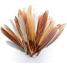 Bolsa con 10 gramos de plumas de indio, escala de marrones